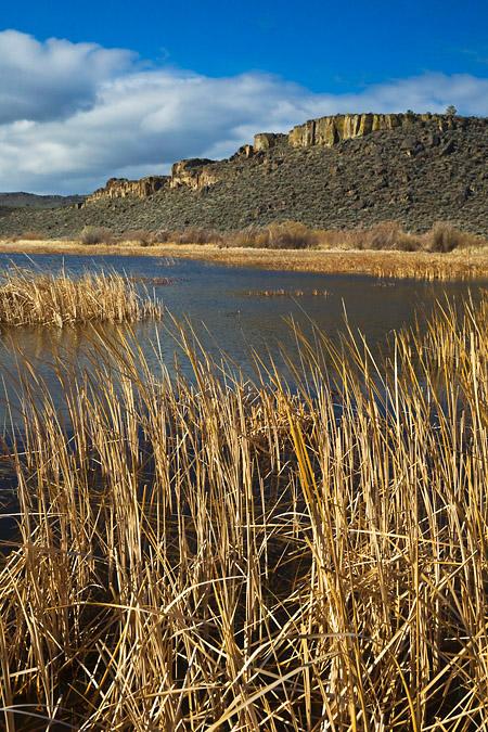 Buena Vista Ponds and Overlook in Malheur National Wildlife Refu