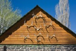 Mule Deer antlers on a barn in Diamond, Oregon