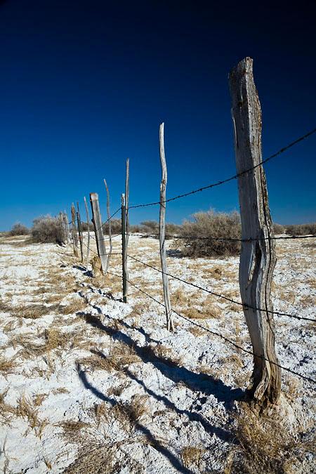 Fence through alkali flat in Malheur National Wildlife Refuge