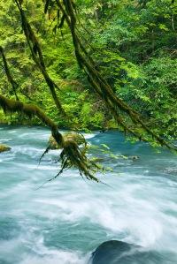 Dosewallips River