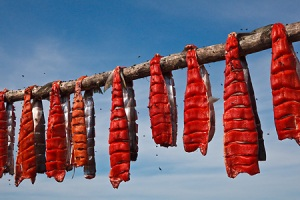 Air-drying Sockeye Salmon