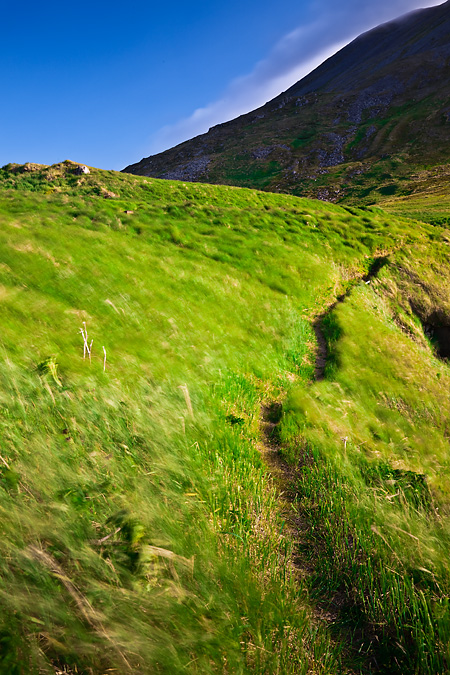 Headlands Trail on Round Island