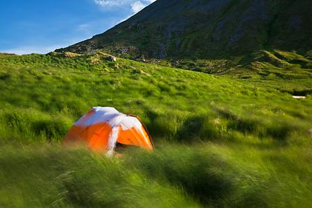 Windy day in camp, Round Island, Alaska