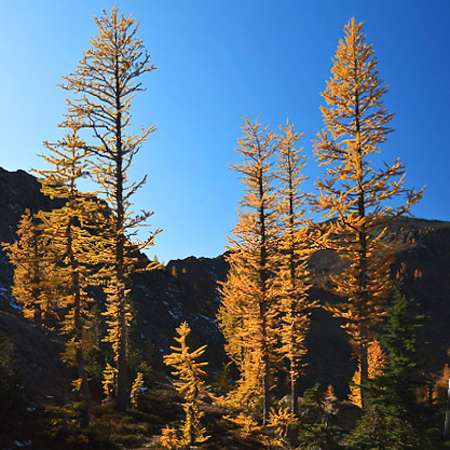Headlight_Creek_Basin-45