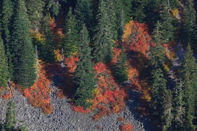 Mt_Rainier_October-167