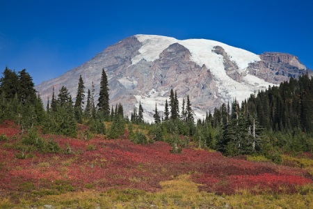 Mt_Rainier_October-195