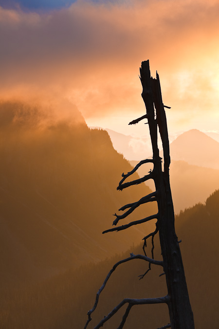 Mt_Rainier_October-35