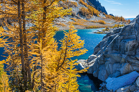 Alpine Larches at Peak Color with Perfection Lake in The Enchant