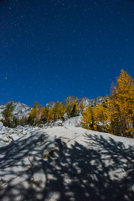 Alpine Larch Shadows by Moonlight on Granite in The Enchantments