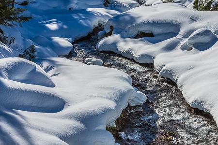 Lake Creek near June Lake at Mount St. Helens