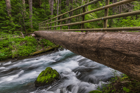Rustic Log Bridge Crossing Dungeness River in Olympic National F