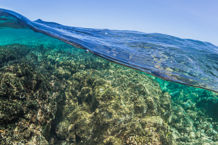 Over-under View of Kapoho Tide Pools off Big Island of Hawaii