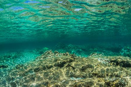 Looking Up Toward Surface of Kapoho Tide Pools off Hawaii