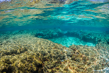 Reflections of Coral Reef on Surface of Kapoho Tide Pools off Ha