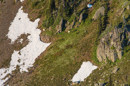 Marmot_Pass-126