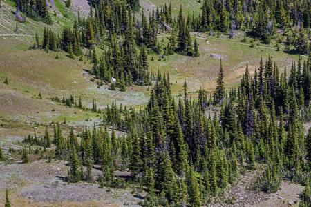 Marmot_Pass-221
