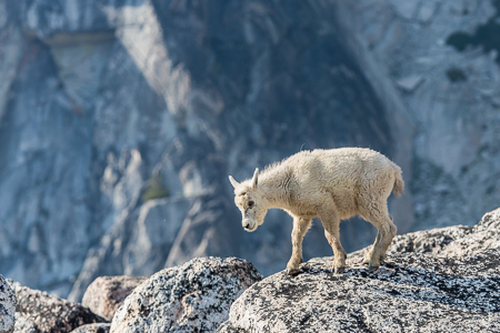 The_Enchantments_Summer-230