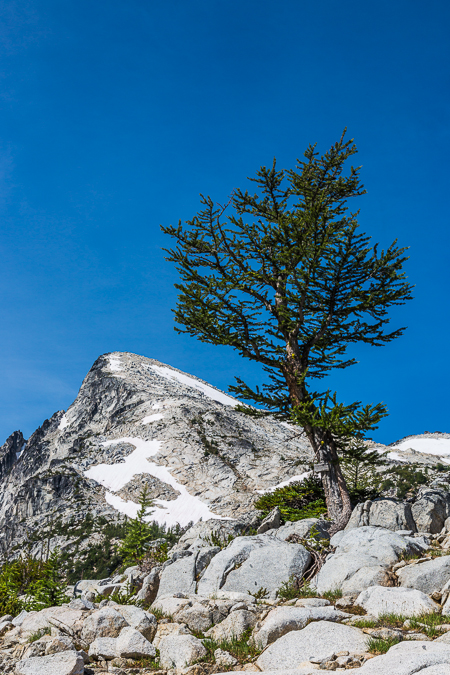The_Enchantments_Summer-963