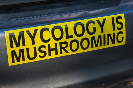 Seattle_Mushroom_Show-53