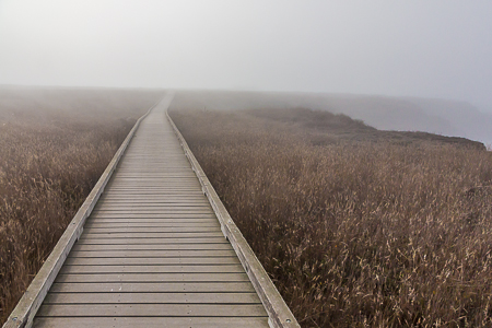 Laguna Point Boardwalk in Fog in MacKerricher State Park