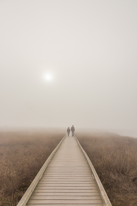 Couple on Laguna Point Boardwalk in Fog in MacKerricher State Pa