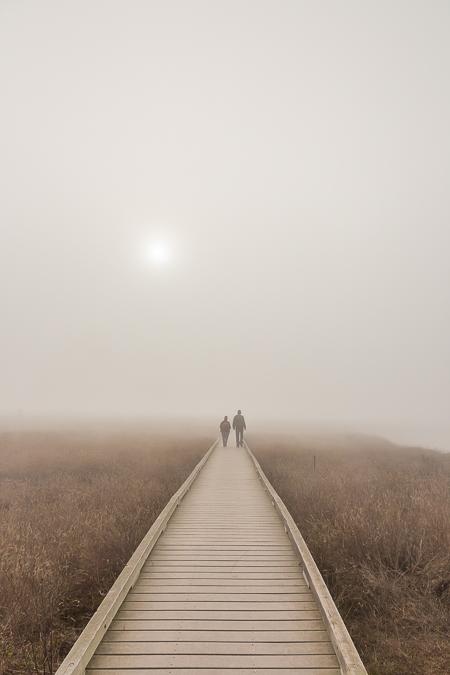 Couple on Laguna Point Boardwalk in Fog in MacKerricher State Pa
