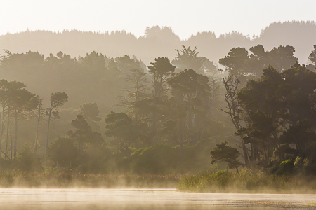 Misty Morning on Lake Cleone in MacKerricher State Park