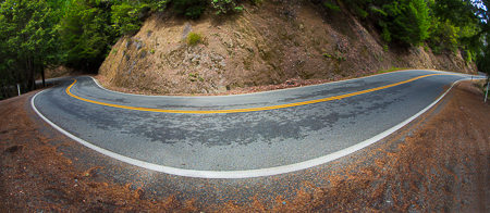 California's SR 1 Winding through Redwood Fores