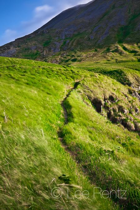Headlands Trail on Round Island on windy day