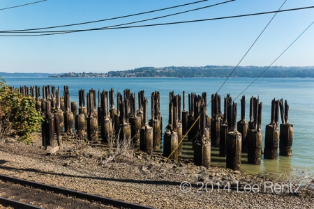 Amtrak_Coast_Starlight-28