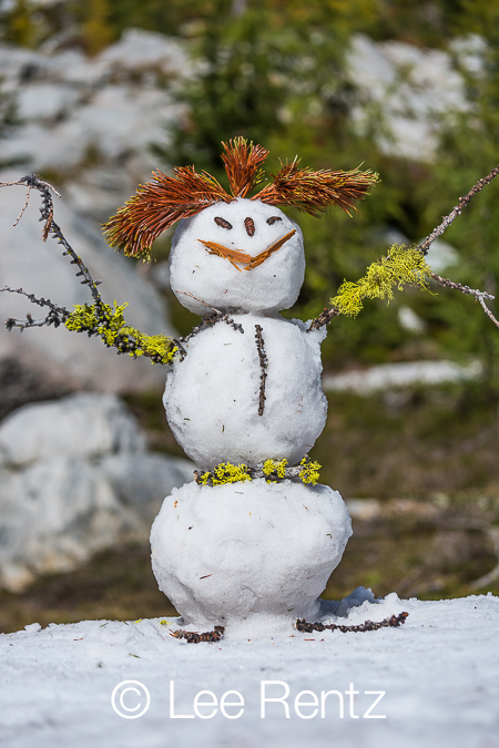 Snowman Made from Natural Materials in The Enchantments