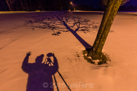 Tree and Photographer Shadows Crossing a Snowy Winter Landscape