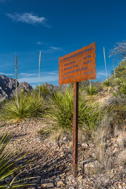 Sign for Chisos Basin Loop Trail in the Chisos Mountains of Big Bend National Park, Texas, USA