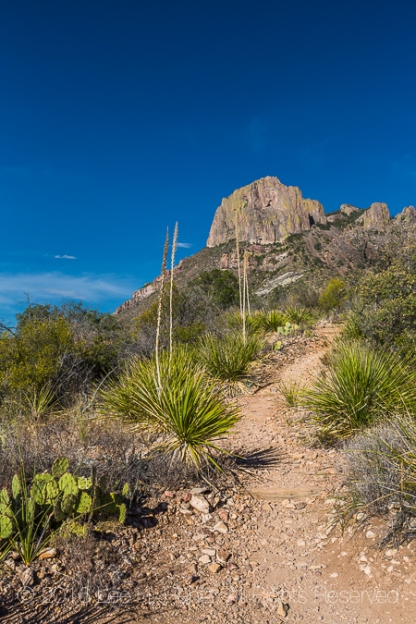 Casa Grande and Chisos Basin Loop Trail in Big Bend National Park, Texas, USA