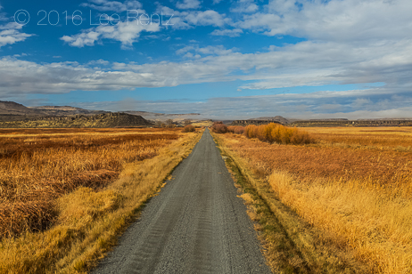 Road through Malheur National Wildlife Refuge