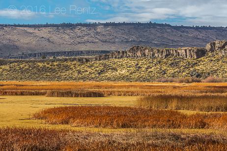 Buena Vista Ponds in Malheur National Wildlife Refuge