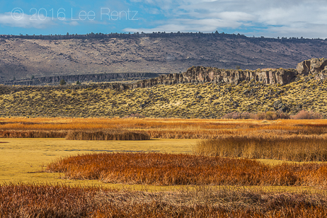 Buena Vista Ponds in Malheur National Wildlife Refuge