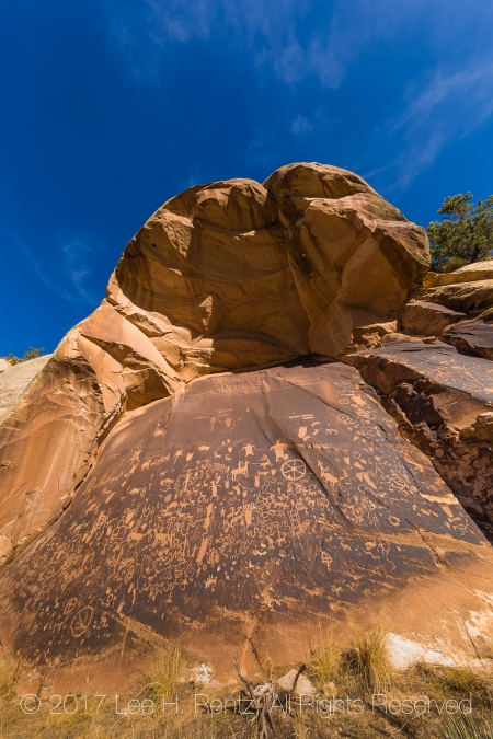 Petroglyphs at Newspaper Rock In Indian Creek National Monument