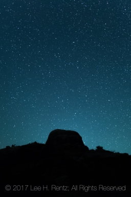 Starry, starry, night camping within Salt Creek Canyon in The Needles District of Canyonlands National Park, Utah, USA