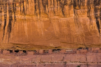 Desert varnish runs down the cliff above Big Ruin, an Ancestral Pueblo village site within Salt Creek Canyon in The Needles District of Canyonlands National Park, Utah, USA