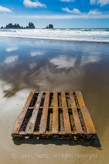 Wooden Pallet Washed up on Shi Shi Beach in Olympic National Par