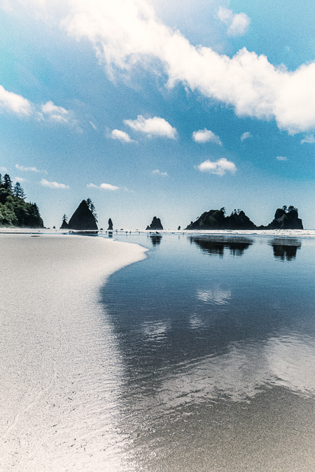 Wet Sand at Low Tide on Shi Shi Beach in Olympic National Park