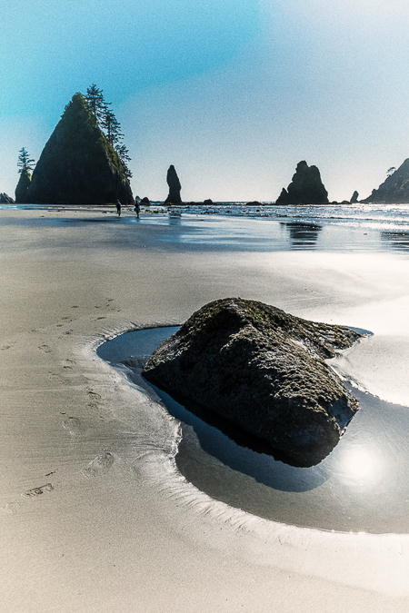 Wet Sand and Rocks at Low Tide on Shi Shi Beach in Olympic Natio