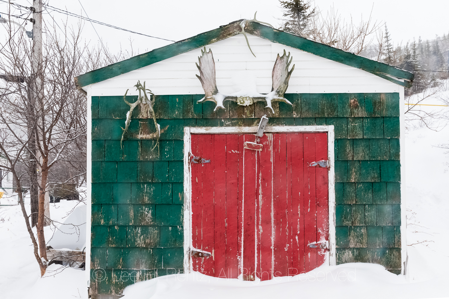 Shed with Moose Antlers in Francois Outport in Newfoundland