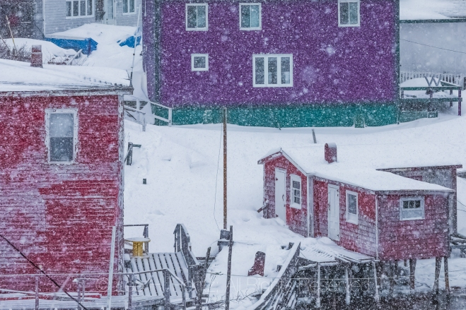 Fishing Stage and Colorful Homes in Francois Outport during a Sn