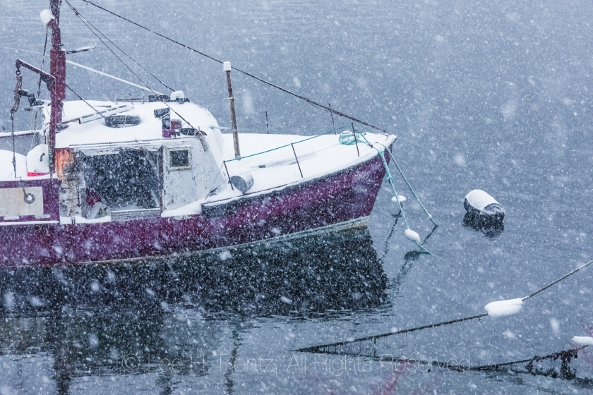 Fishing Boats in Francois Outport during a Snowstorm in Newfound