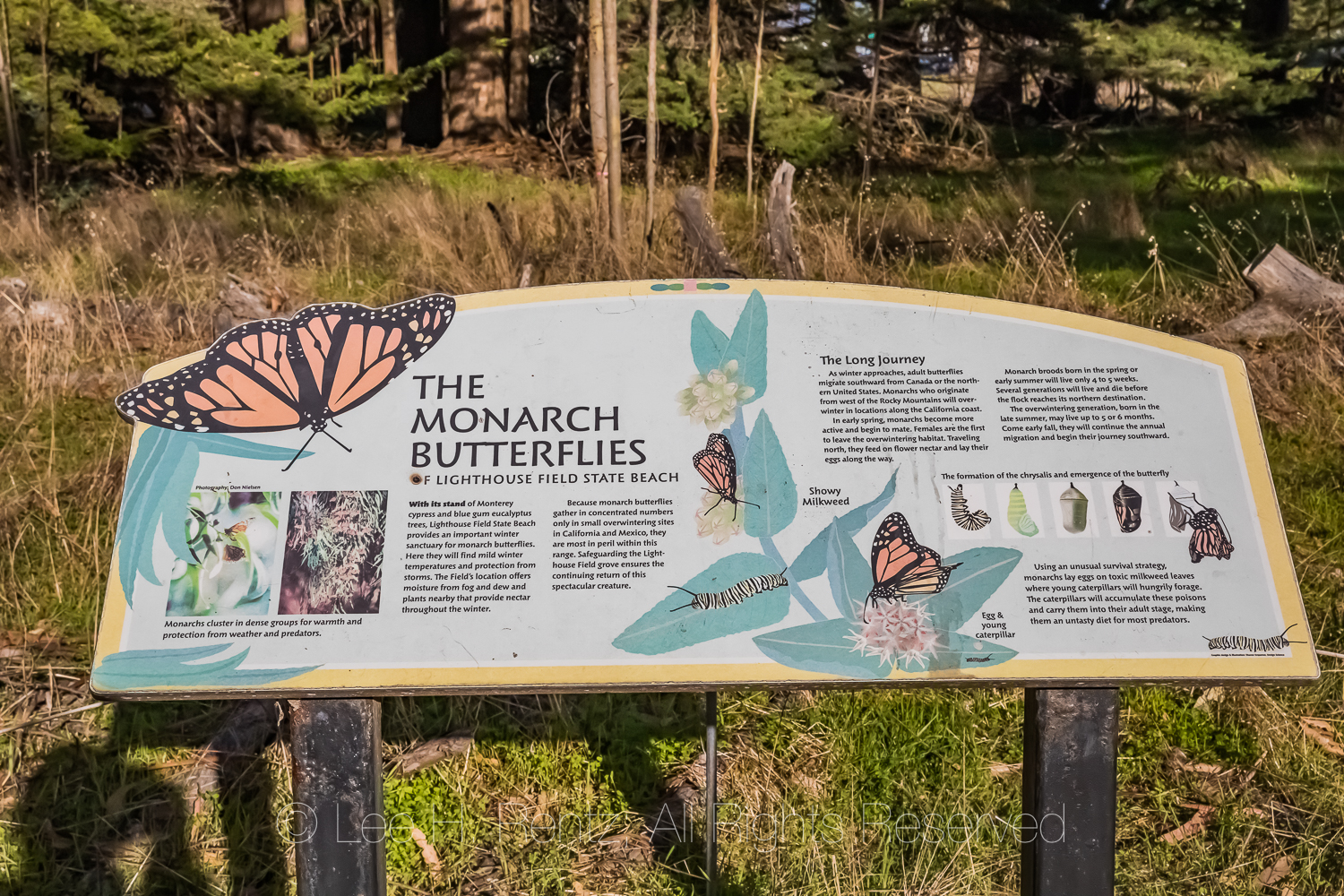 Sign Explaining Monarch Butterfly Migration along California Coa