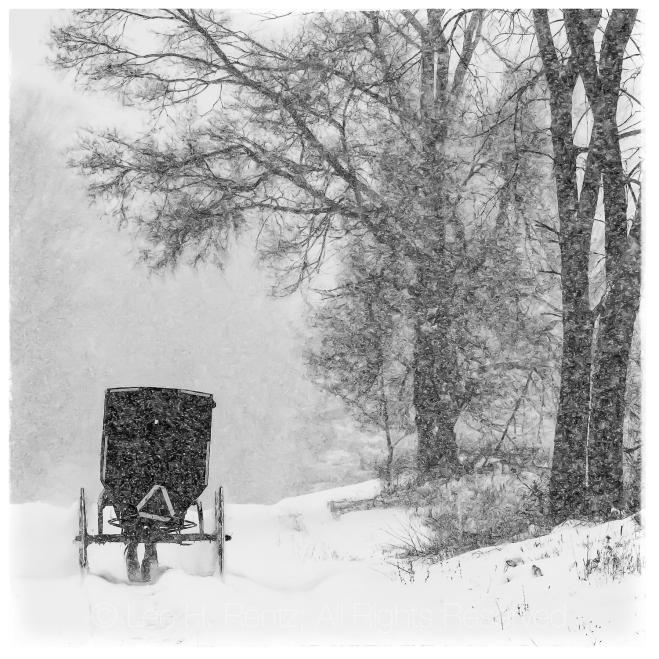 DEEP SNOW BUGGY WHITE BORDER MASTER